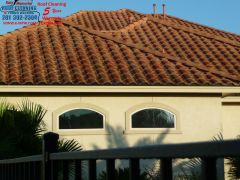 tile roof before cleaning