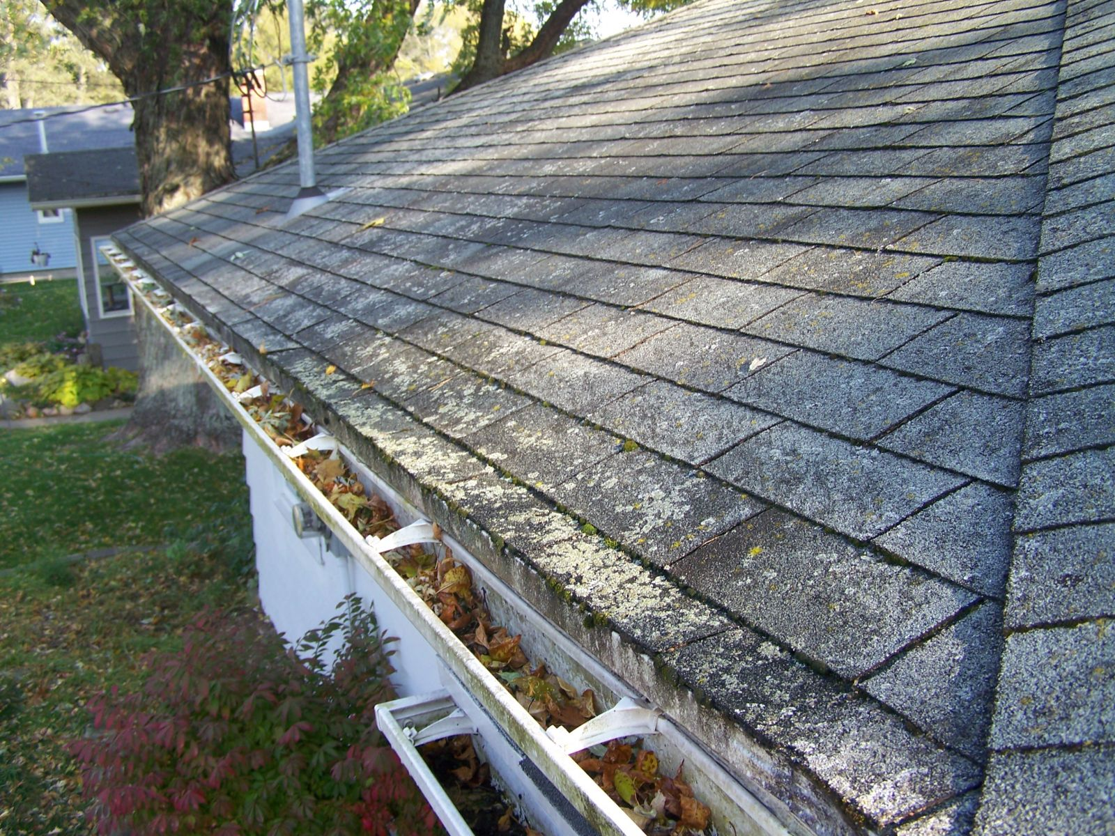 Non-Pressure Roof Cleaning, Grand Rapids, Mi
