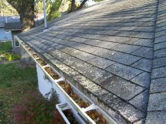 Roof Cleaning Grand Rapids, MI - kleen Roofs