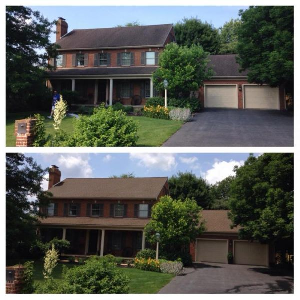 Non Pressure Roof Cleaning 17601