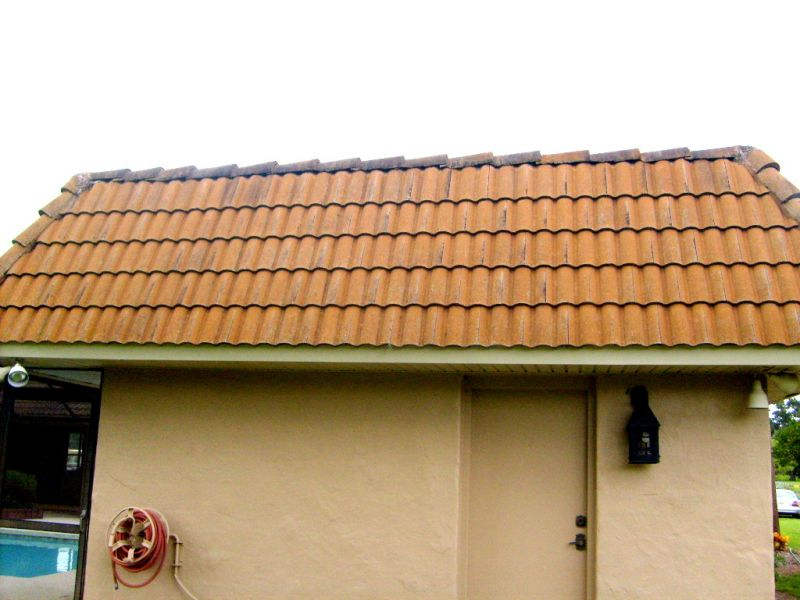 roof%2520cleaning%2520028.jpg