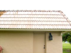 roof%2520cleaning%2520030.jpg