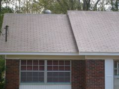 Tampa%2520Roof%2520Cleaning%2520005-001.jpg
