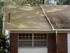 Tampa%2520Roof%2520Cleaning%2520002.jpg