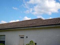 Tampa%2520Non%2520Pressure%2520Roof%2520Cleaning%2520024