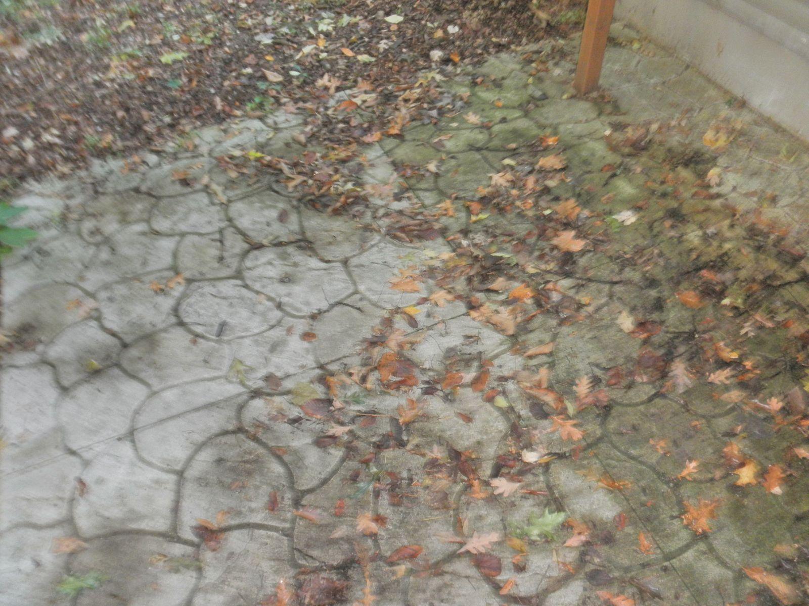 Patio cleaning Grand Rapids Michigan
