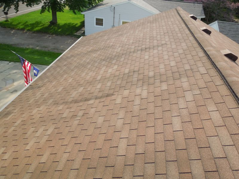 Dirty roof In Portage, MI (2)