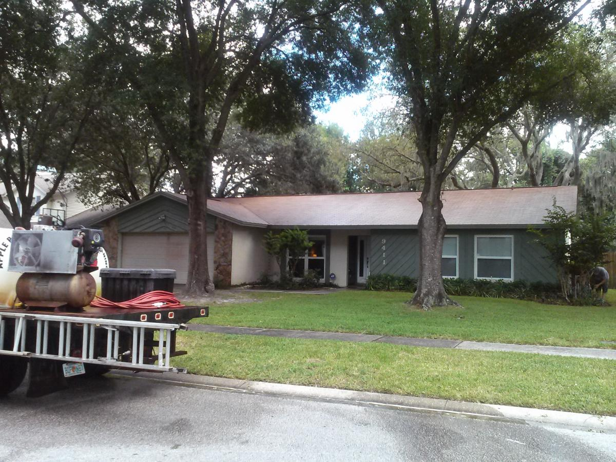 Roof Cleaners Tampa Fl Tile Roof Cleaning Tampa 813 655
