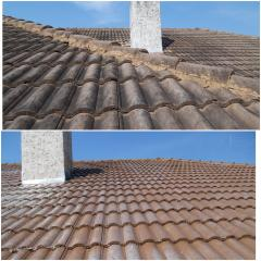 Tile roof wash