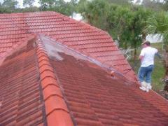 Bergman Roof Cleaning