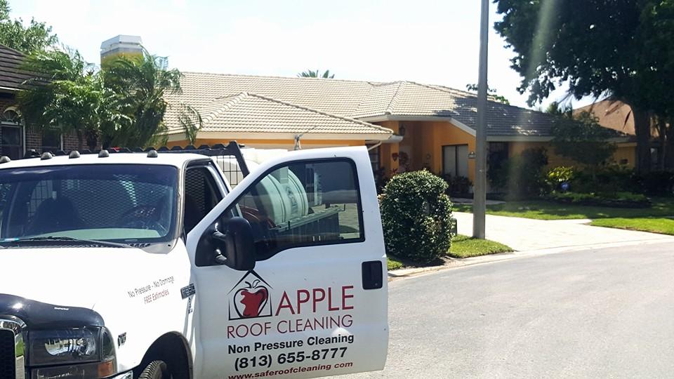 cleaned tampa tile roof.jpg