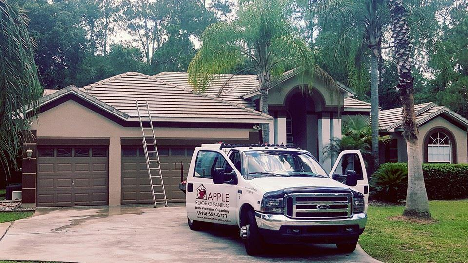 cleaned tile roof in tampa.jpg