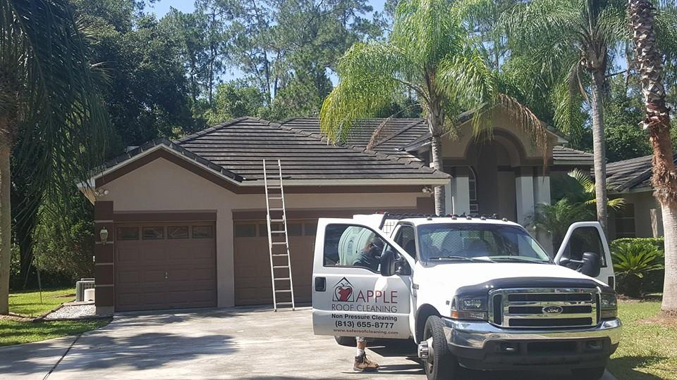 tile roof before cleaning in tampa.jpg