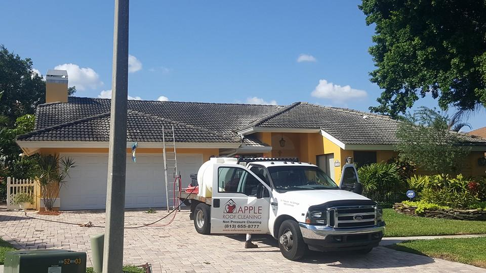tile roof in tampa florida before we cleaned it.jpg