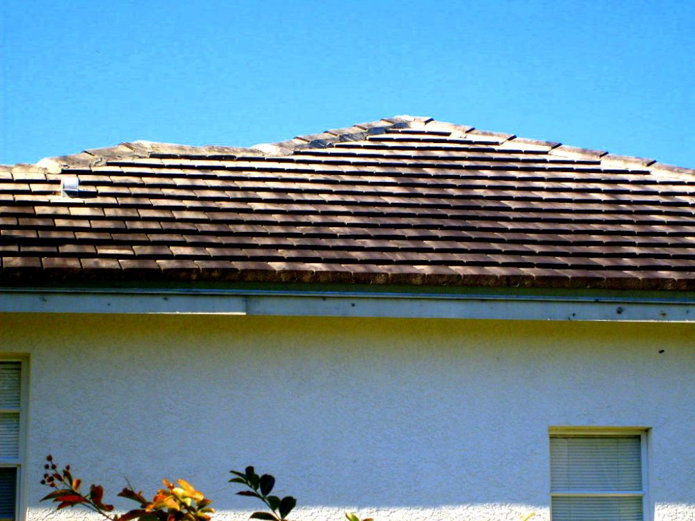 Tampa Non Pressure Roof Cleaning 022.jpg