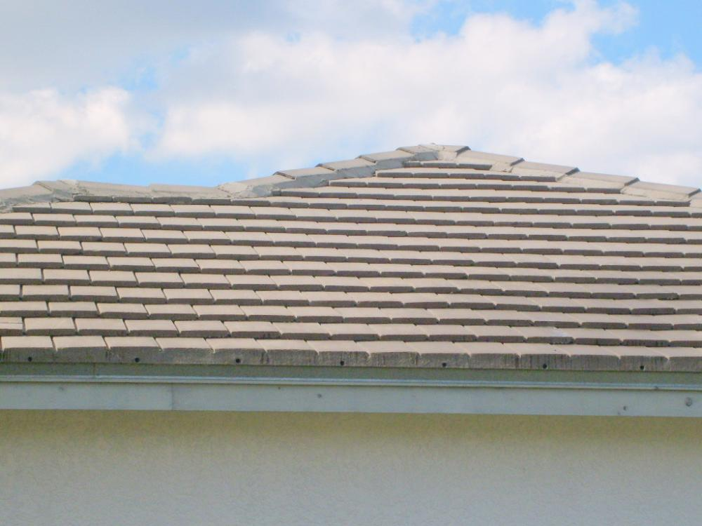 Tampa Non Pressure Roof Cleaning 026.jpg