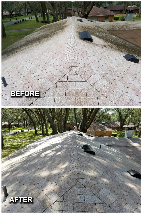 non-pressure-roof-cleaning-jacksonville-florida.jpg
